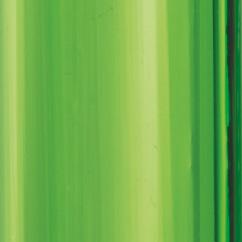 12 Verde Caraibi